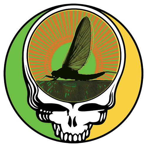Steal Your Face Drake