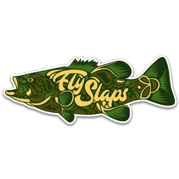 Fly Slaps Ornamented Smallmouth Bass