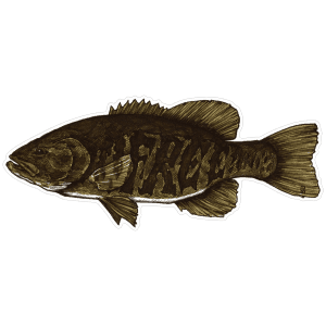 Jake Keeler Free The Fighter Smallmouth Bass Sticker