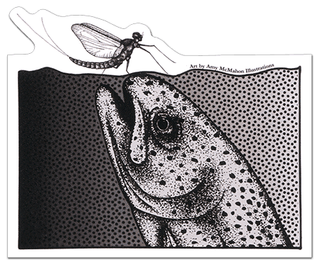 Fly Fishing Stickers and Decals Amy McMahon Rising Rainbow Trout Decal