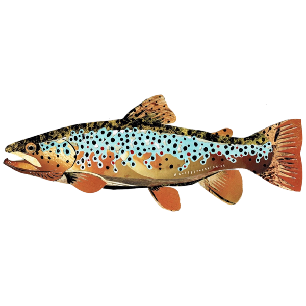 Holly Jones Brown Trout Sticker