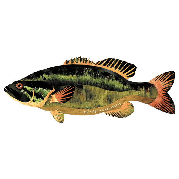 Holly Jones Small Mouth Bass Sticker